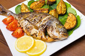Roasted gilthead fish — Stock Photo