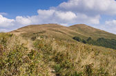 Carpathians mountains — Stock Photo