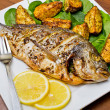 Roasted gilthead fish - Stock Photo
