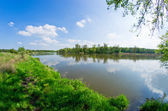 River during the spring time — Stock Photo