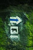 Blue trail mark with bear symbol — Stock Photo