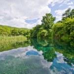 Springs of Black Drin river near Ohrid, Macedonia — Stock Photo #31596865