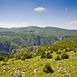 Balkans hills covered by rocks — Stock Photo
