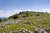 岩石所涵盖的巴尔干山 — 图库照片