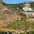 Stock Photo: Agricultural areon Hvar island, Croatia