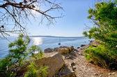 Croatian seashore with rocks — Stock Photo