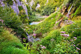 Canyon in Plitvice national park, Croatia — Stockfoto