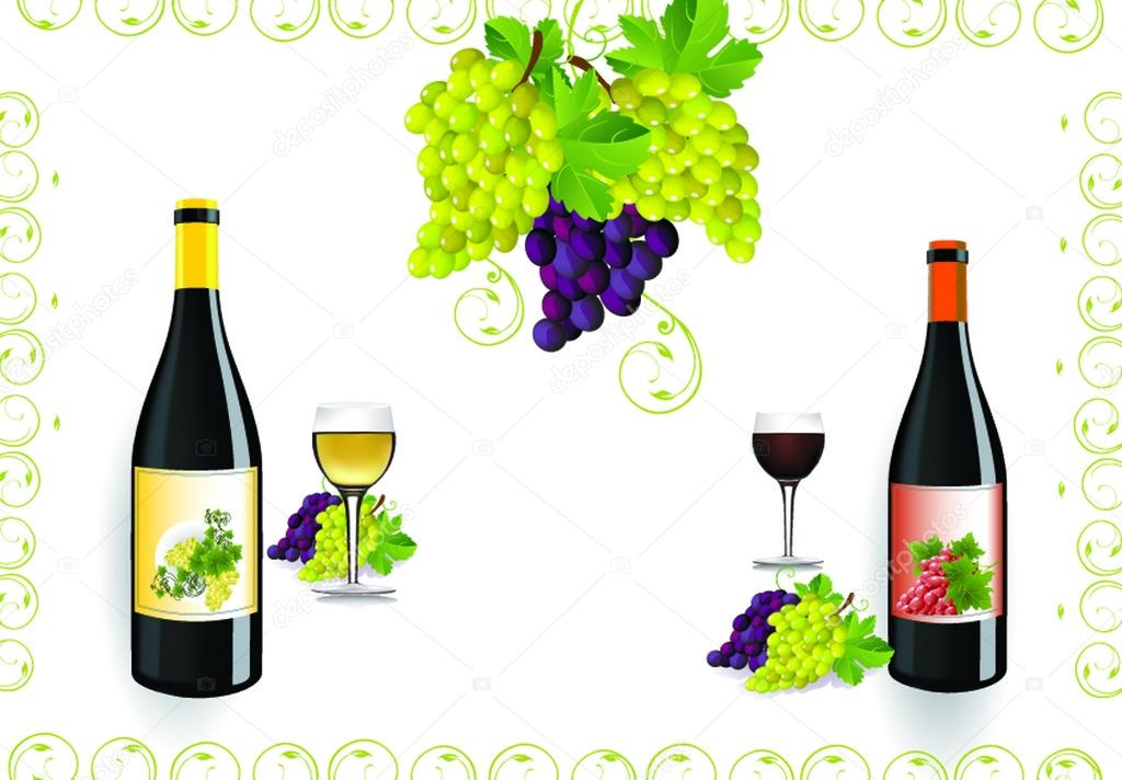Red wine bottle and glass with fresh grapes and grapevine framing with copy space — Stock Vector #14938403