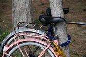 Locked bike — Stock Photo