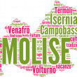 Molise tagcloud - regioni di Italia — Stock Photo