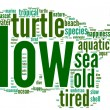 Turtle shaped tag cloud - Stockfoto
