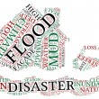 Flood concept pictogram tag cloud illustration — Stock Photo