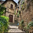 Old italian buildings in HDR - fisheye lens photo. — Stock Photo