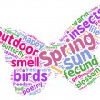 Spring concept tag cloud butterfly shaped illustration — Stock Photo