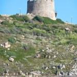 Coast of St. Teresa in Summer - North Sardinia, Italy — Stock Photo #50164183
