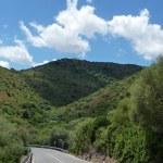Road through a mediterranean landscape — Stock Photo #50167203