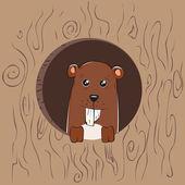 Squirrel — Vetor de Stock