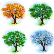 Four season trees — Stock Vector #17593205