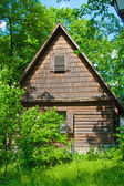 Old house in the woods — Stock Photo