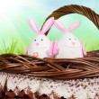 Stock Photo: Basket with eggs in form of rabbit