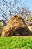 Dry haystack — Стоковое фото