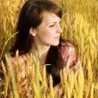 Pretty brunette in a wheat — Stock Photo