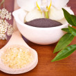 Natural products for body care — Stock Photo