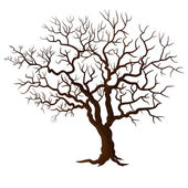 Tree without leaves isolated on white — Stockvector