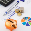 Money savings concept: charts, calculator, pen, pig, coins — Stock Photo