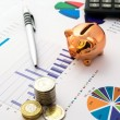Stock Photo: Money savings concept: charts, calculator, pen, pig, coins