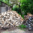 Stock Photo: Stack of firewood in rural areas