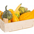 Wooden box with pumpkins — Stock Photo #17905301