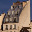 Architecture of Paris, France — Stock Photo #17880289
