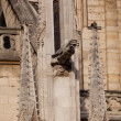 Notre dame cathedral, Paris, France — Stock Photo #17883867