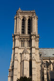 Cathedral of Notre Dame, Paris, Ile de France, France — Stock Photo
