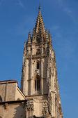 Cathedral of Oviedo, Asturias, Spain — Stock Photo
