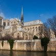 Cathedral of Notre Dame, Paris, Ile de France, France — Foto de Stock