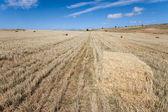 Bales of wheat, Sepulveda, Segovia, Castilla y Leon, Spain — Stock Photo