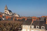 Panoramic of Blois, Loir et cher, France — Stock Photo