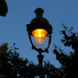 Stock Photo: Streetlamp in Tulleries, Paris, Ile de France, France