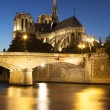 Notre dame Cathedral, Paris, Ile de France, France — Foto de Stock