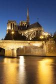 Notre dame Cathedral, Paris, Ile de France, France — Stock Photo