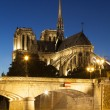 Notre dame Cathedral, Paris, Ile de France, France — Stock Photo