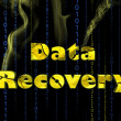Data recovery — Stock Photo