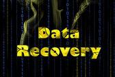 Récupération de données — Photo