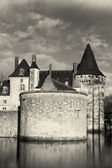 Castle of Sully-Sur-Loire, Loiret, France — Stockfoto