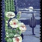 50th anniversary of Arizona Statehood — Stock Photo #11873069