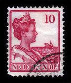 Reina guillermina de los países bajos — Foto de Stock