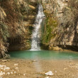 Stock Photo: Mineral spring of Ein Gedi