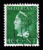 Wilhelmina , Queen of the Netherlands — Stock Photo